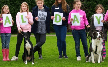 How Cheltenham Animal Shelter worked with Give as you Live