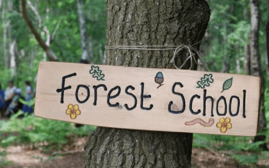 How FOREST SCHOOL FUND, Knaresborough worked with Give as you Live